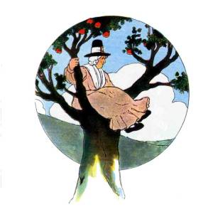 The Real Mother Goose 1916 illustration by Blanche Fisher Wright Gutenberg Project